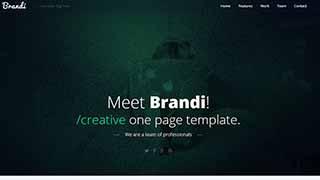 Šablona webu Brandi